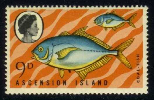 Ascension #131 Coalfish, MNH (3.25)