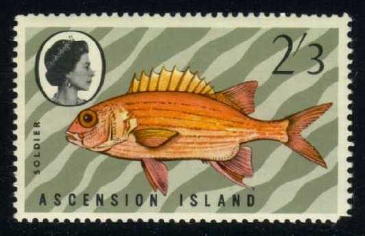 Ascension #133 Soldierfish, MNH (5.50)